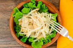 从Daikon和鸡的饮食沙拉 背景玉米片食物健康宏观工作室白色 图库摄影