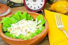 从Daikon和鸡的饮食沙拉 库存照片