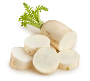 Daikon Royalty Free Stock Images