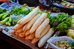 Daikon Royalty Free Stock Photos