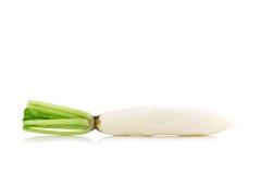 Daikon rädisor som isoleras på vit bakgrund Arkivfoto