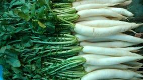 Daikon, radis blanc Photographie stock