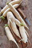 Daikon radish Royalty Free Stock Images
