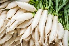 Free Daikon Radish Vegetables At Asian Market Stock Photography - 47405302