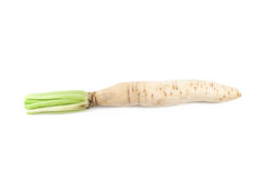 Daikon radishes Royalty Free Stock Photo