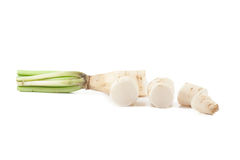Daikon radishes Royalty Free Stock Image