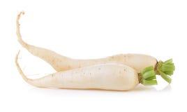 Daikon radishes isolated on white background Royalty Free Stock Photos