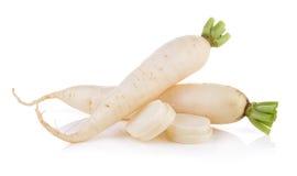 Daikon radishes isolated on white background. Daikon radishes isolated on a  white background Royalty Free Stock Photography