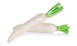 Daikon radishes isolated white background. Daikon radishes isolated on white background Stock Photos