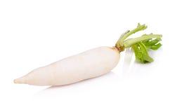 Daikon radishes isolated on white background.  Stock Photo