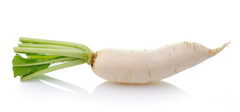 Daikon radishes isolated on white background Stock Photo