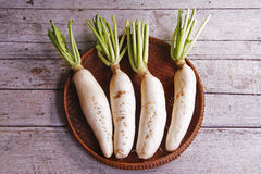 Daikon radishes Royalty Free Stock Images