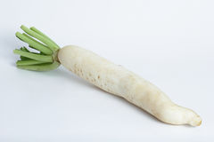 Daikon radishes Stock Image