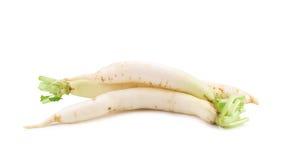 Daikon radishes  on white background. Stock Images