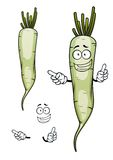 Daikon or white radish vegetable character. Happy daikon or white radish vegetable cartoon character with root and green sappy haulm, for agriculture design Royalty Free Stock Photo