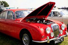 Daimler clásico 250 V8. Imagen de archivo