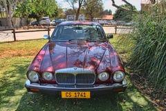 Daimler dubblett 1984 sex salong V12 för serie III Royaltyfri Fotografi