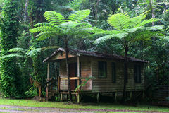 Daintree cottage Royalty Free Stock Photo