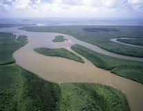 Daintree flod arkivfoto
