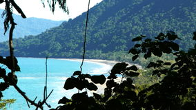 Daintree national park. Cow bay at cape tribulaion in the daintree national park stock video