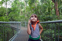 Daintree National Park Queensland Australia. Girl (age 6) walks on a path in Daintree National Park in the tropical north of Queensland, Australia that was stock photos