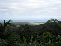 Daintree Rainforest. A view from the Daintree Rainforest Stock Photos