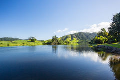 Daintree River View Royalty Free Stock Photography