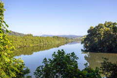 Daintree River View Royalty Free Stock Photo