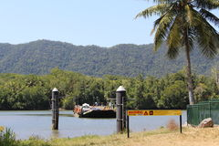 Daintree river Royalty Free Stock Image