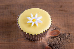 Dainty cupcake with icing design Stock Photo