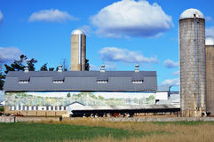 Dairy Barn with Mural Stock Photography