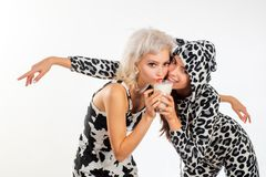 Dairy is a building block of life. Pretty girls on dairy diet drinking milk together. Fashionable dairy food consumers. In spotted cow design clothes royalty free stock photos