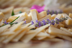 Cheese platter, healthy eating. Stock Photography