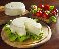 Dairy cream cheese. With tomatoes, basil and salad Royalty Free Stock Image