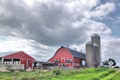 Dairy farm. A dairy farm against a cloudy sky Stock Photos