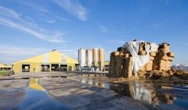 Dairy farm Stock Image