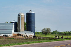 Dairy Farm. A dairy farmyard with silos Stock Images