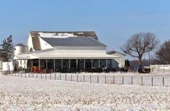Dairy farm and livestock Royalty Free Stock Photo