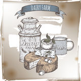 Dairy farm template with cheese plate, metal milk can and cup. Dairy farm template with cheese plate, metal milk can and enamel cup. Includes hand drawn ribbon Royalty Free Stock Image