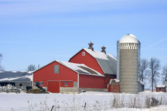 Dairy Farm Winter Stock Image