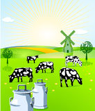 Dairy farming. Natural milk and agriculture Royalty Free Stock Photo