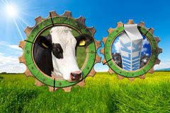 Dairy Industry - Gears in Countryside Royalty Free Stock Photos