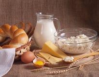 Dairy produce royalty free stock photos