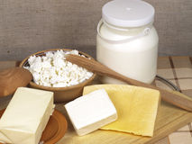 Dairy product Stock Photography