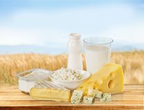 Dairy product. Milk cheese yogurt food breakfast drink royalty free stock photos