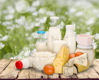 Dairy product. Milk cheese yogurt milk bottle food drink stock image