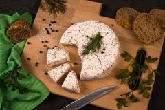 Dairy product with spices. The white cheese with dill and parsley is on cutting board with some bread and spices. Dairy product Royalty Free Stock Photo