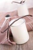 Dairy product, yogurt Stock Photography