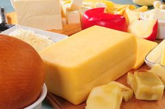 Dairy products. Stock Photography