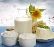 Dairy Products. On Nature Background Royalty Free Stock Image
